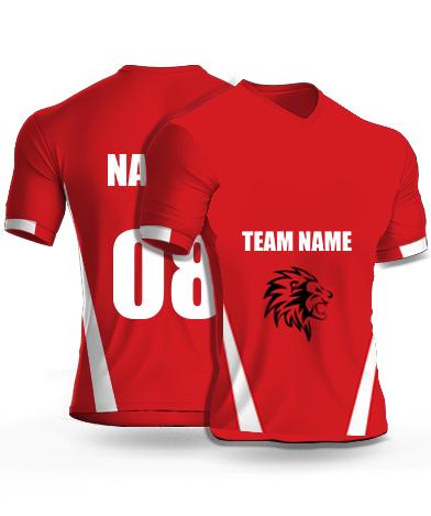 Punjab IPL Cricket jersey or Sports T shirt