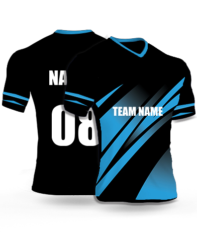 Blue Hawk - Cricket Jersey or Sports T shirt with your name and number(67)