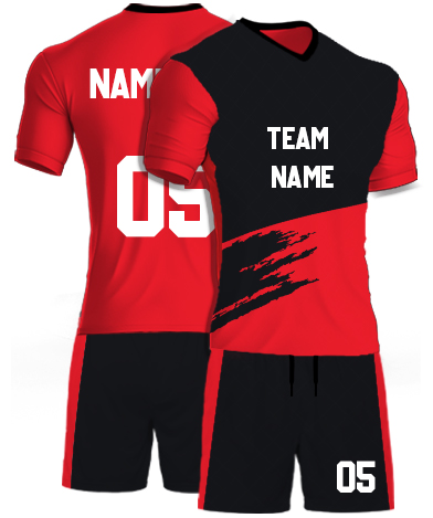 kabaddi Kit Jersey or Sports T shirt with your name and number(lion_king)