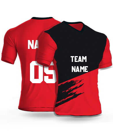 kabaddi Jersey or Sports T shirt with your name and number(lion_king)